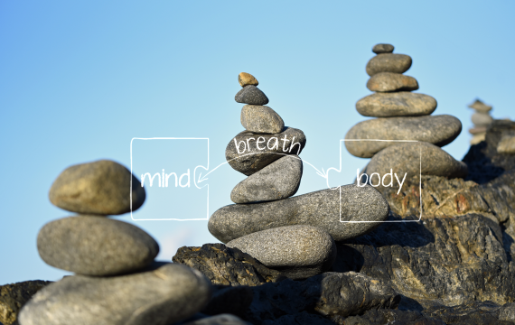 Breath, Body & Mind Course